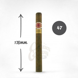 ROMEO y JULIETA - Churchills